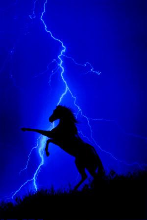 lightning-and-silhouette-of-horseblue.JPG