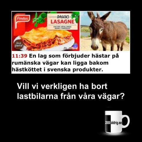 findus-hc3a4stkc3b6tt-c3a5snekc3b6tt-lasagne-satir-humor-2000aldrig1