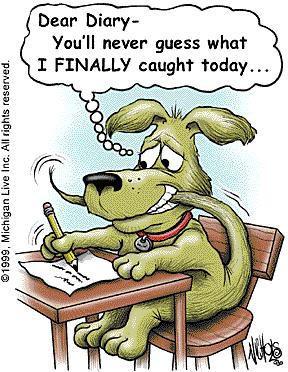 nancy-humor-hund-fngat-svansen_74717109