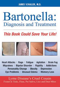 BartonellaFront72_250px1